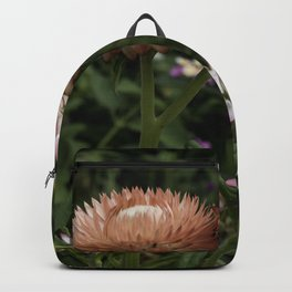 Color Therapy with Nature Backpack