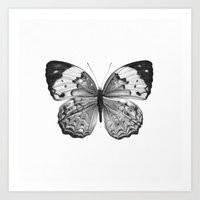 butterfly Art Prints featuring Butterfly by Hermes_GC