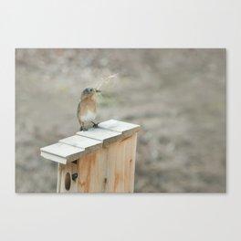 Build Your Nest Canvas Print