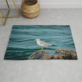 Seagull Perched on Rocky Shore of Lake Michigan in Holland MI Rug