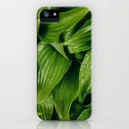 Some Leafy Stuff iPhone Case