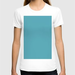 Blue Lagoon Solid Matte Colour Blocks T-shirt
