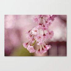 Weeping Willow Flowers Canvas Print