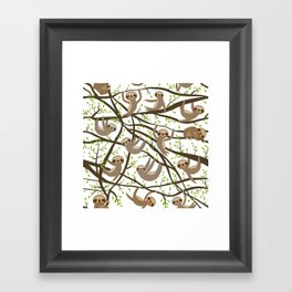 funny and cute smiling Three-toed sloth on green branch tree creeper Framed Art Print