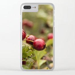 Red on green #1 Clear iPhone Case