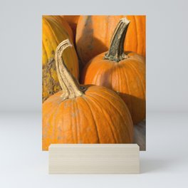 Line up of Orange Pumpkins Mini Art Print