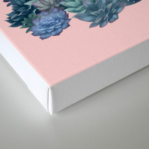 Milagritos Cacti on Rose Quartz Background Canvas Print