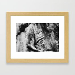 Spanish Moss in Conway, SC Framed Art Print