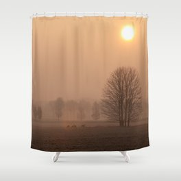 Early morning in a clearing Shower Curtain