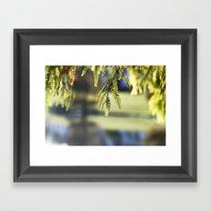 Like Glass Framed Art Print