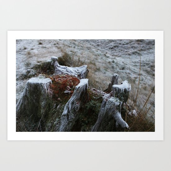 Stump & Frost Art Print