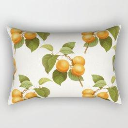 Apricot Fruit Vintage Art Rectangular Pillow