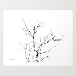 BRANCH LIGHT Art Print