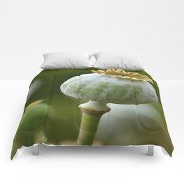 Poppy 280 Comforters