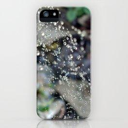Catch the Light iPhone Case