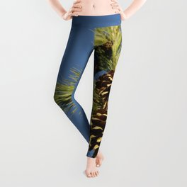 Pine cones and branches against a blue autumn sky Leggings