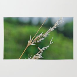 only a blade of grass Rug
