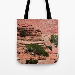 Zion - II Tote Bag