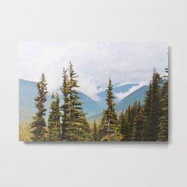 Skagway Woods Metal Print