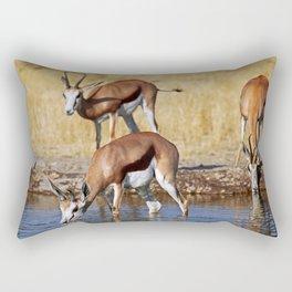Springboks in Botswana, wildlife Rectangular Pillow
