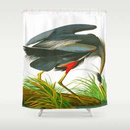 Great blue heron John James Audubon Vintage Scientific Bird Illustration Shower Curtain