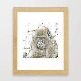 fascinating altered animals - Gorilla Framed Art Print