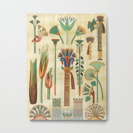 Egyptian paper papyrus hieroglyphs Metal Print