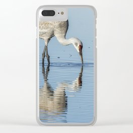 Sandhill Crane and Reflection Clear iPhone Case