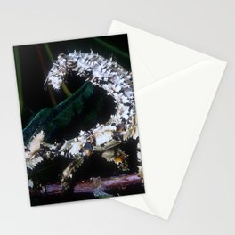 Exotic Scorpion From Papua New Guinea Stationery Cards