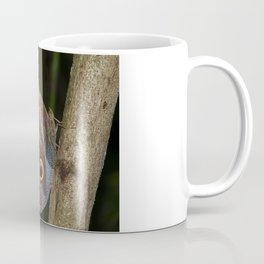 Owl butterfly in Costa Rica - Tropical moth Coffee Mug