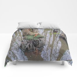 The  Swamp Fairy's Home Comforters