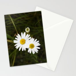 The Daisy In The Middle Stationery Cards