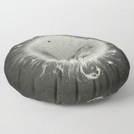 Sirious A Floor Pillow