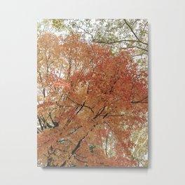Autumn Leaves III Metal Print