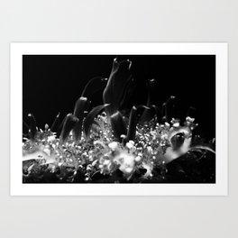 UNDERWATER  # 1 Art Print
