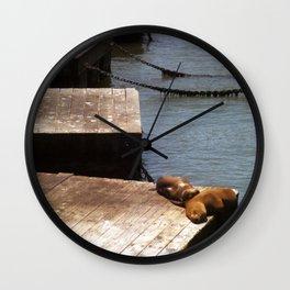 Sunbathing Seals Wall Clock