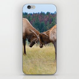 Bull elk in the rut season in Jasper National Park iPhone Skin