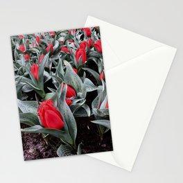 Keukenhof Red 3 Stationery Cards