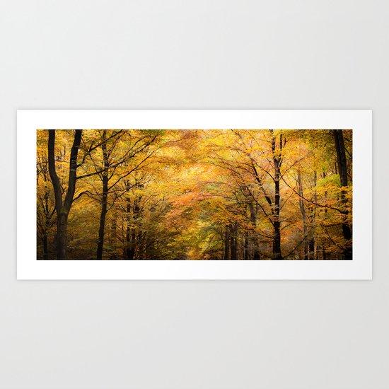 Autumn is on Fire Art Print