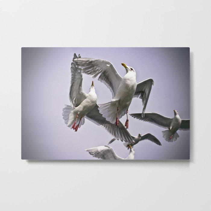 """ The Beauty of Flight "" - Print Metal Print"