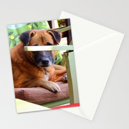 Give a Dog a Phone Stationery Cards