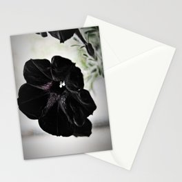 Black Velvet Stationery Cards