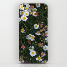 Ditzy Daisies iPhone Skin