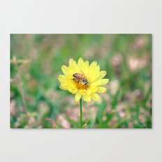 Nature In April - 2 Canvas Print