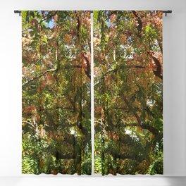 Spring Tree Blackout Curtain