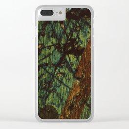 Pyroxene and Feldspar Clear iPhone Case