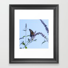 My Flutterby Garden Framed Art Print