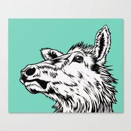 Tuquoise Elk Canvas Print
