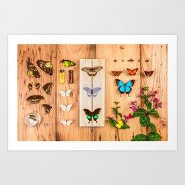 Butterfly Collector Art Print