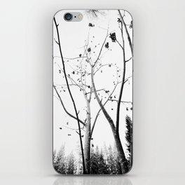 Viburnum II  iPhone Skin